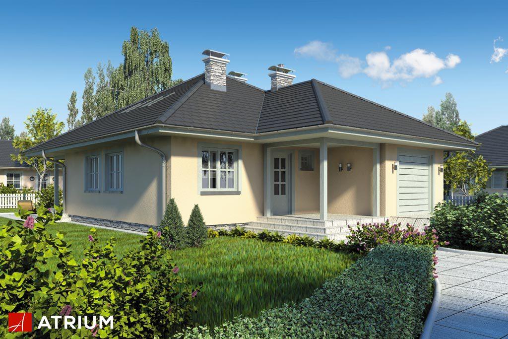 Projekt Pelikan - elewacja domu