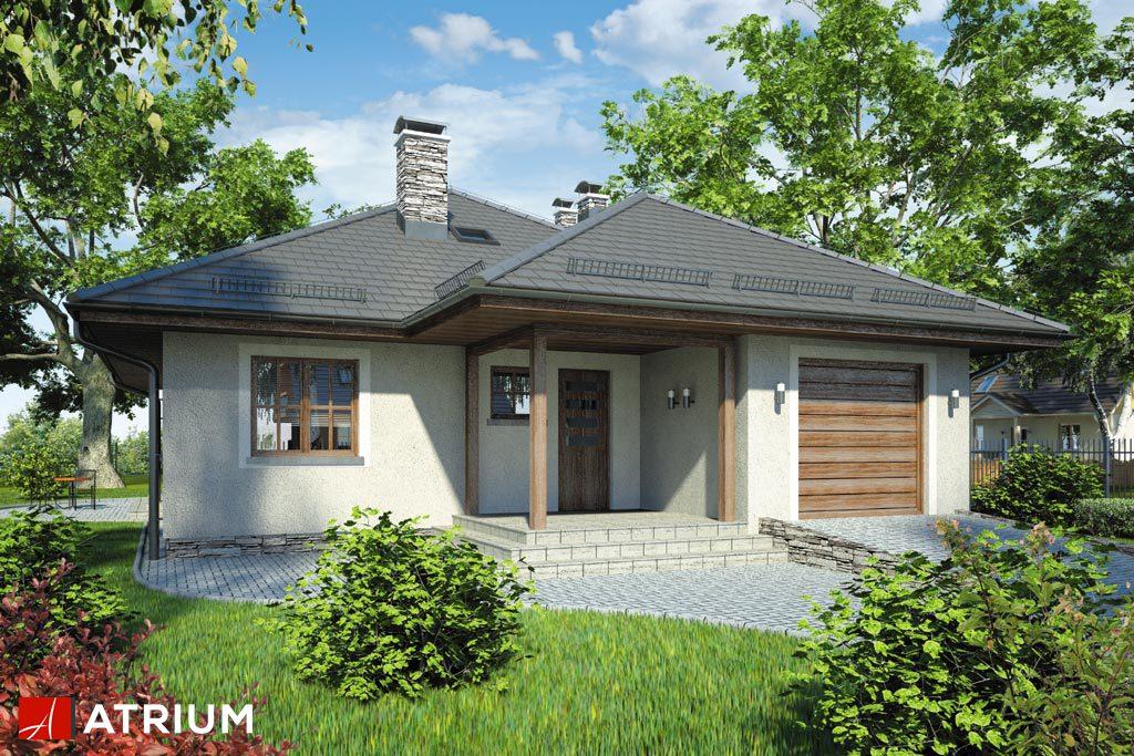 Projekt Bursztyn - elewacja domu