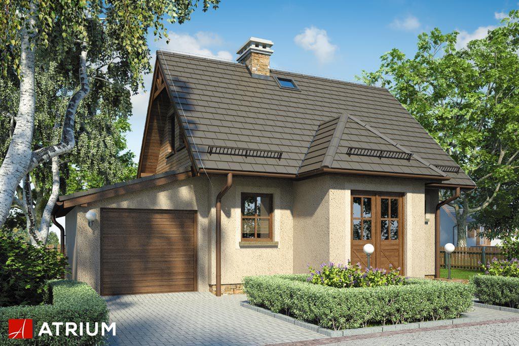 Projekt Kruszyna II - elewacja domu