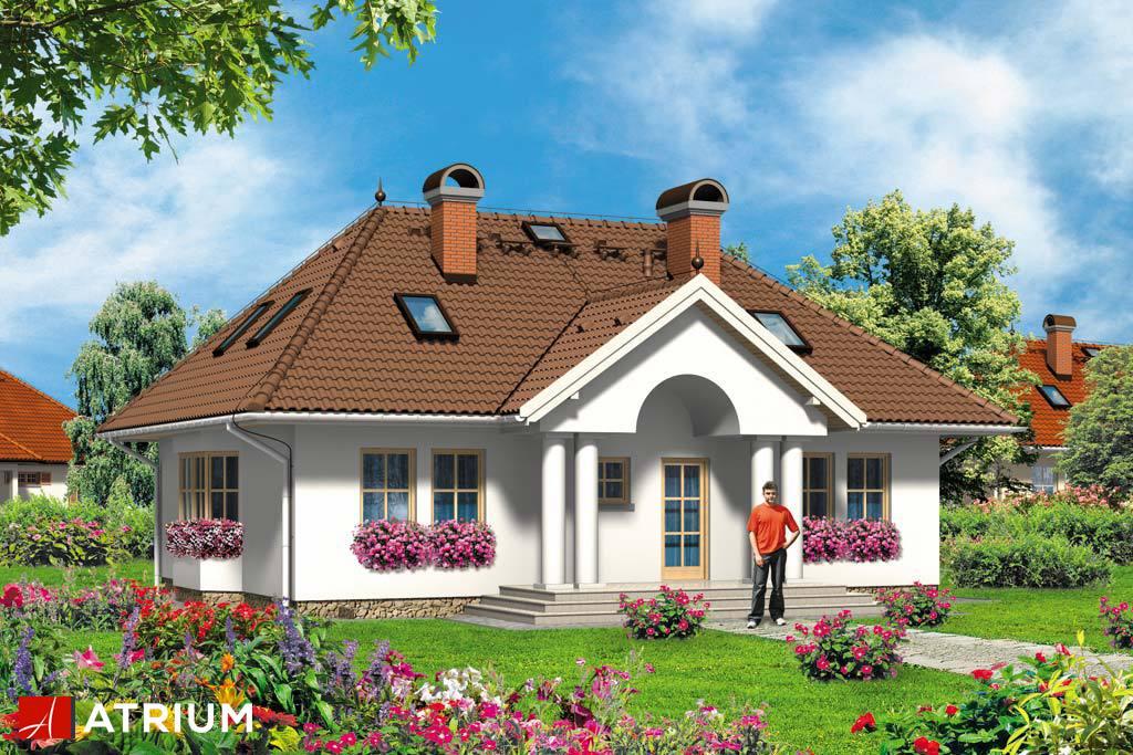 Projekt Miłostek - elewacja domu