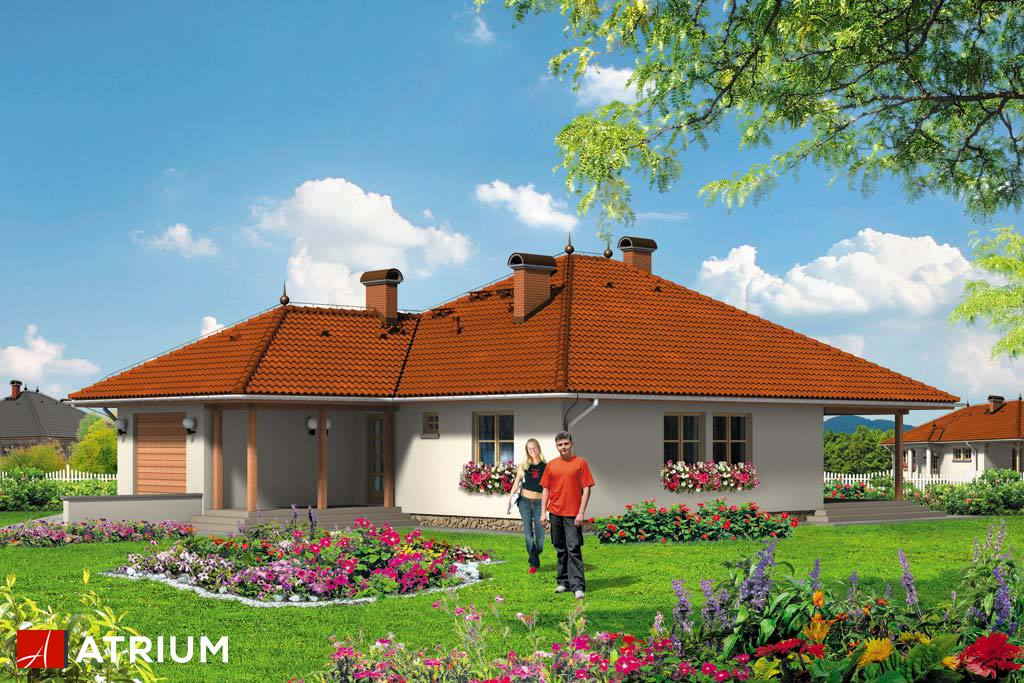 Projekt Faktor - elewacja domu