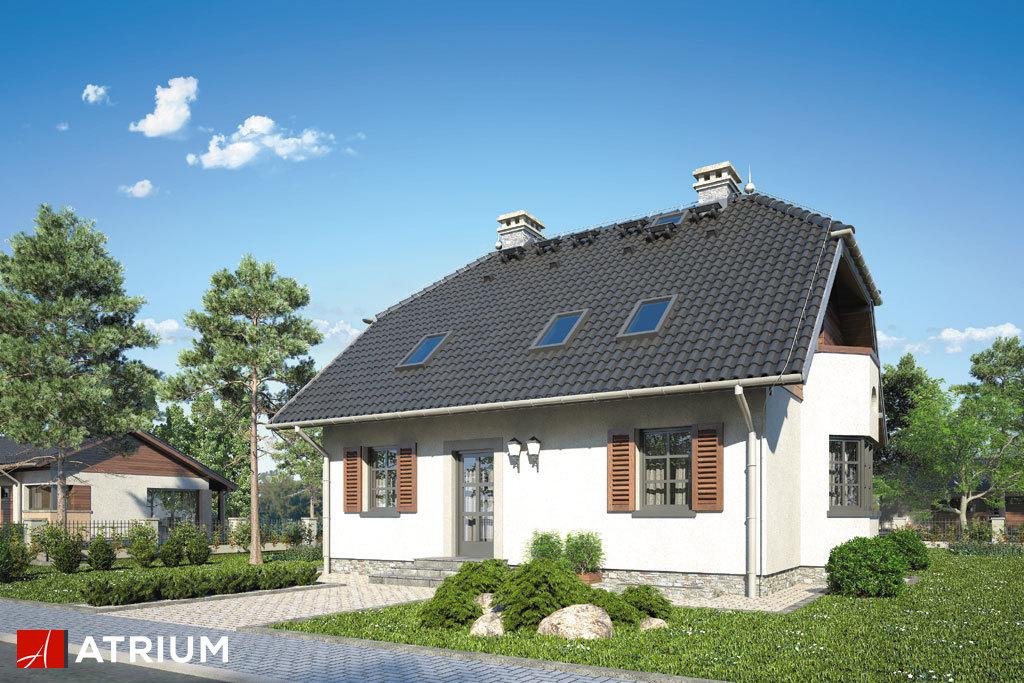 Projekt Jasiek - elewacja domu
