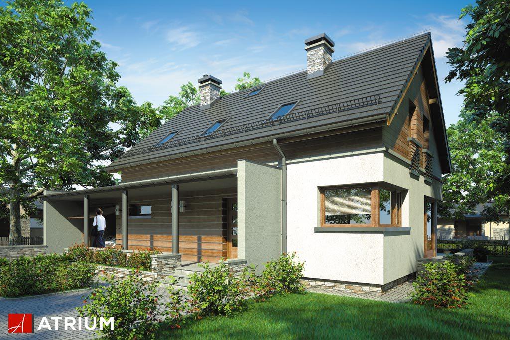 Projekt Samba - elewacja domu