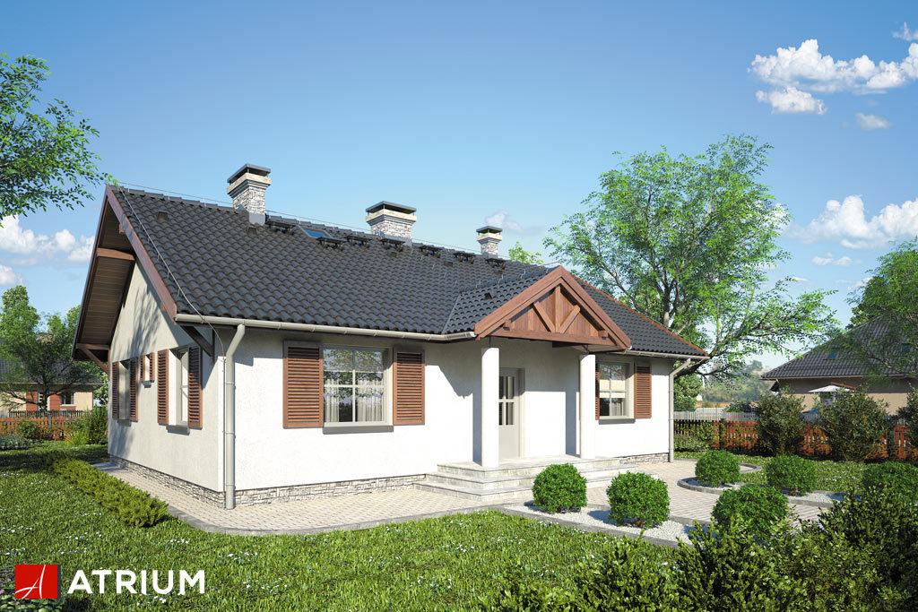 Projekt Dworeczek - elewacja domu