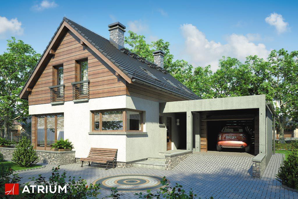 Projekt Samba II - elewacja domu