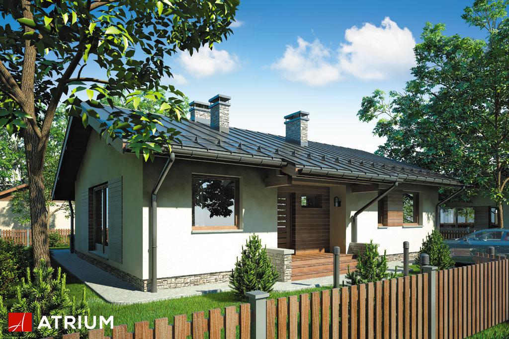 Projekt Neo II - elewacja domu